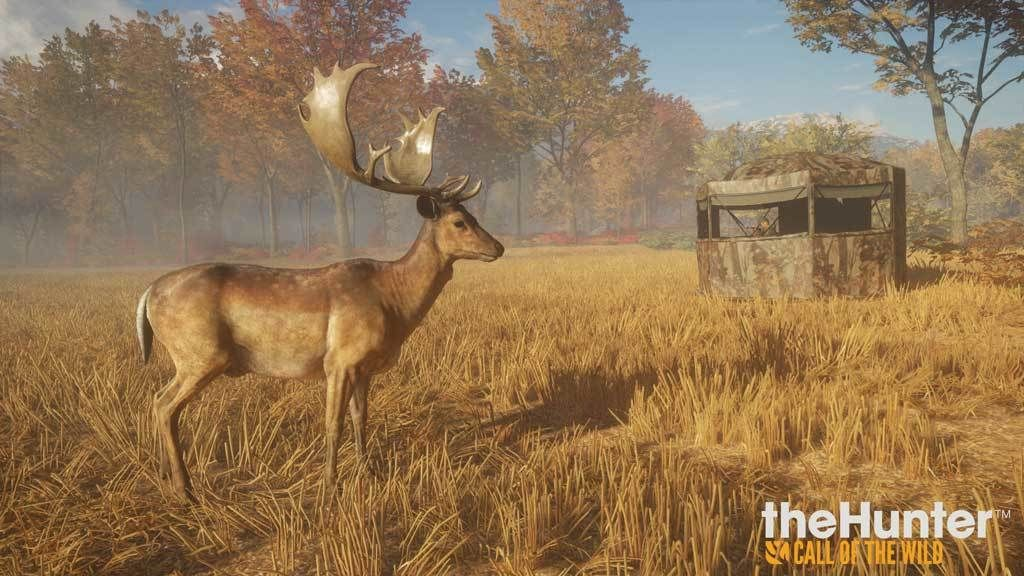thehunter call of the wild key activation download